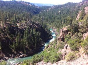 View of Animas River from the Narrow Gauge train