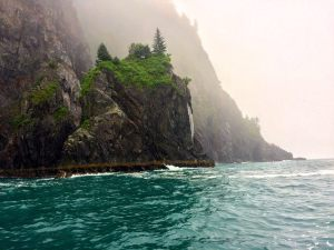 Just off the shores of the Kenai Fjords