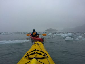 Paddling through icy, glacial water toward Aialik Glacier